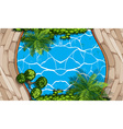 Aerial scene with swimming pool and garden vector image