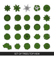 set of trees top view vector image