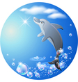 dolphin leaps vector image vector image