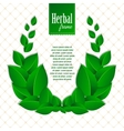 Herbal eco wreath of natural green leaves vector image