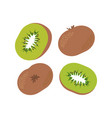 kiwi fruit and slice vector image