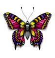 beautiful tattoo butterfly colorful machaon vector image