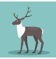 Reindeer Flat vector image