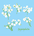 set of branch beautiful hand-drawn white vector image