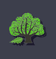 paper sticker on stylish background plant quercus vector image