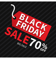 Black friday sale banner design template backgroun vector image