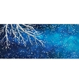 Sky Tree Branches Christmas Banner vector image vector image