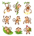 Playful monkeys character set Chinese vector image