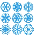 Set of snowflakes on a white background vector