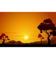 Sunset view of Jungle vector image
