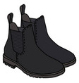 black pear boots vector image