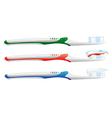 toothbrush set vector image