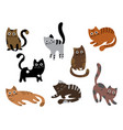 a set of cats a collection of cartoon kittens of vector image