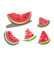 set of slices of watermelon drawing by vector image