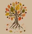 Stylized autumn oak vector image