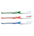 toothbrush set vector image