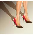 Female legs vector image vector image