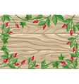Winter Frame with Rose Hips Pine Branches Ivy vector image