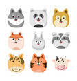 cute zoo animal head design set vector image