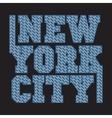 New York typography design graphic vector image