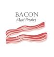 Bacon strips vector image