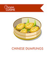 chinese dumplings in plate isolated on white vector image