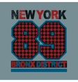 sport new york typography vector image