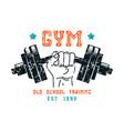 gym club emblem in retro style vector image