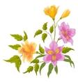 flower alstroemeria vector image