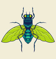 flies mascot vector image