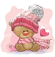 Teddy Bear in a knitted cap vector image