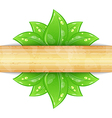 Eco friendly background with green leaves wooden vector image