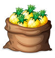 A sack of pineapples vector image vector image