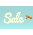 Biplane with word Sale vector image