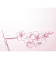 blossoming tree line art vector image vector image