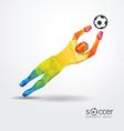 soccer football goalkeeper player geometric vector image vector image
