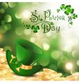 St Patrick holiday vector image