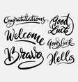 good luck and bravo hand written typography vector image
