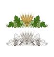 Hops and barley ornament vector image