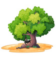 Gibbon and a tree vector image vector image