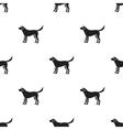 Labrador icon in black style for web vector image