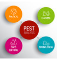 pest diagram schema vector image