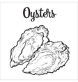 Fresh oyster isolated on a white background vector image