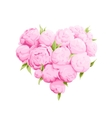 Bright peonies heart vector image