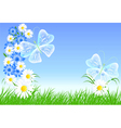 camomiles and butterflies vector image vector image