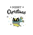 Merry Christmas greeting cards with owl vector image