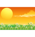 A sunset scenery and the peacful hilltop vector image vector image