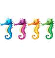 Seahorses vector image vector image