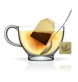tea bag in the cup vector image