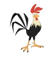 Cock bird design isolated icon vector image